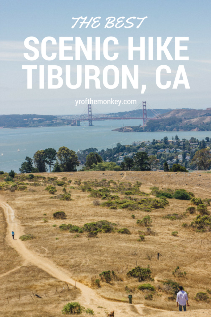 Looking for one the most gorgeous Bay Area hikes with dogs? Look no further than this dog friendly hiking trail in Tiburon, Marin county from where you can get sweeping views of Golden Gate bridge and the bay. Read this local dog mom's guide for details and pin to your California or hiking board now! #california #hiking #USA #dogfriendly #dogfriendlyhiking #dogfriendlytrails #BayArea