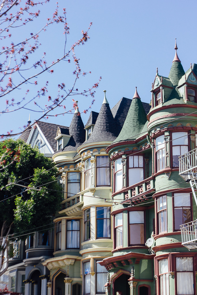What to do in San Francisco on a layover