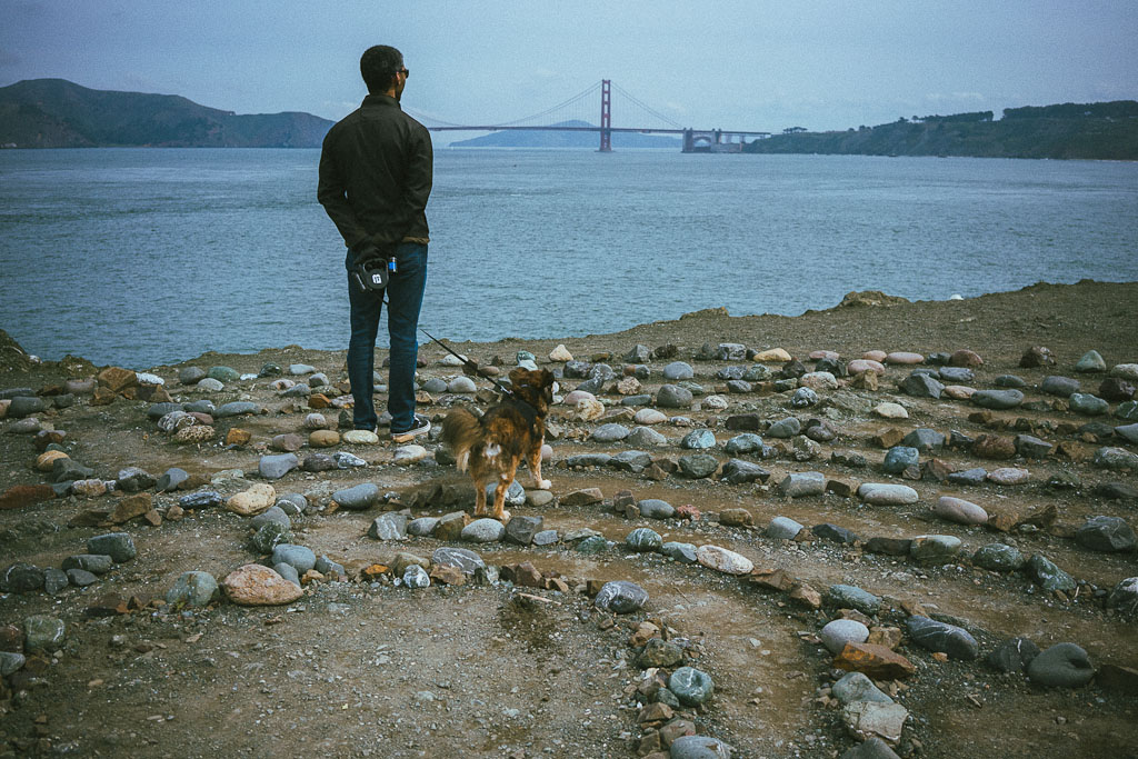 dog friendly hiking trails in SF Bay Area