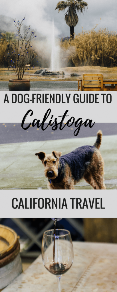 This is a guide to dog-friendly Calistoga (USA), California's hidden gem. This small town in wine country, Napa valley, is filled with lots of dog friendly activities such as old faithful geyser and petrified forest, restaurants and wineries that welcome dogs. Pin this to your California or USA board for a relaxing weekend in Napa's best kept secret. #dogfriendlytravel #Calistoga #napavalley #California #USA #travelwithpets