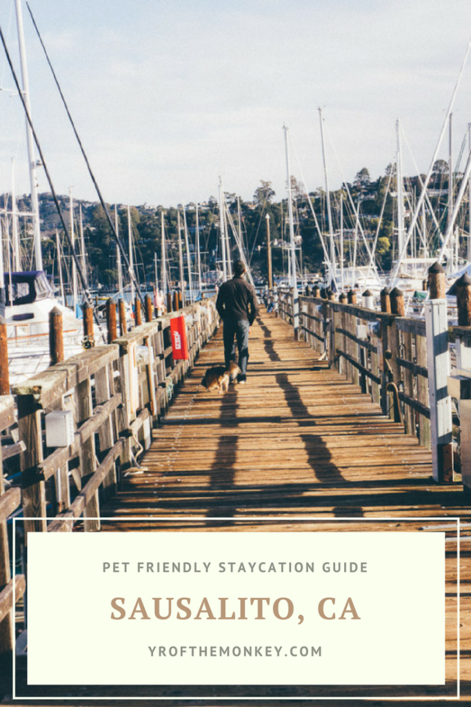 Dog Friendly Sausalito is your guide to Sausalito, California which has many dog friendly things to do. Visit this Charming California town for a unique stay on a houseboat with your dog along with many other fun things to do! Pin this to your California or USA or pet travel board now! #dogfriendlytravel #travelwithpets #sausalito #californiavacation #USA
