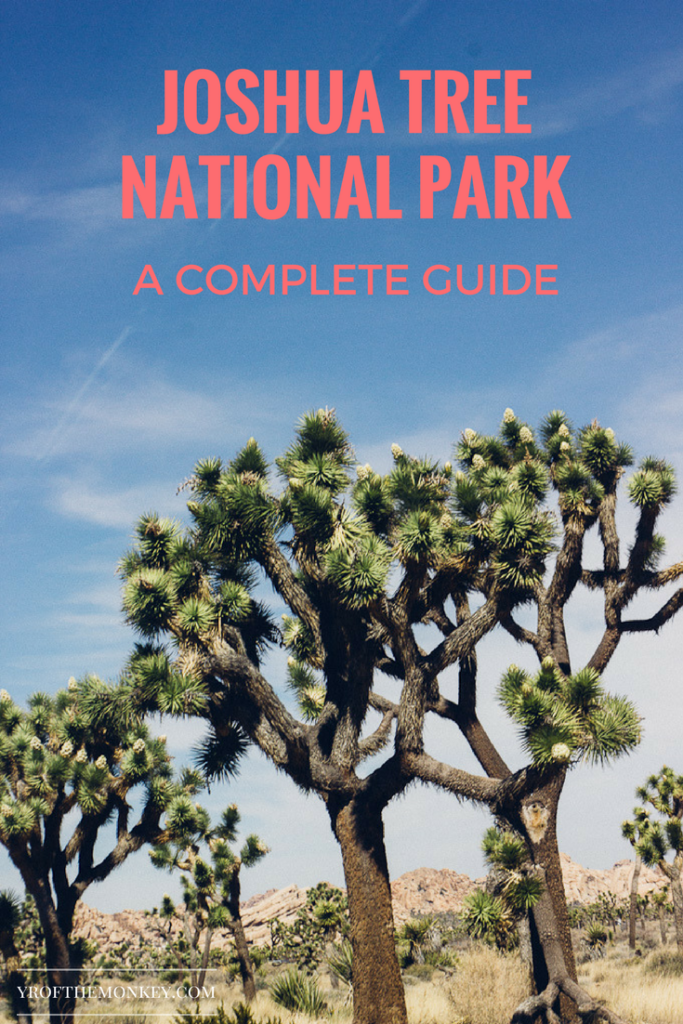 Joshua tree guide is a first time visitors guide to Joshua tree national Park, California, USA. Includes information on best Joshua tree hikes, Joshua tree trails, hotels and restaurants near Joshua tree national Park. Read this guide for a day trip to Joshua tree and pin it to your California board! #joshuatree #california #hiking