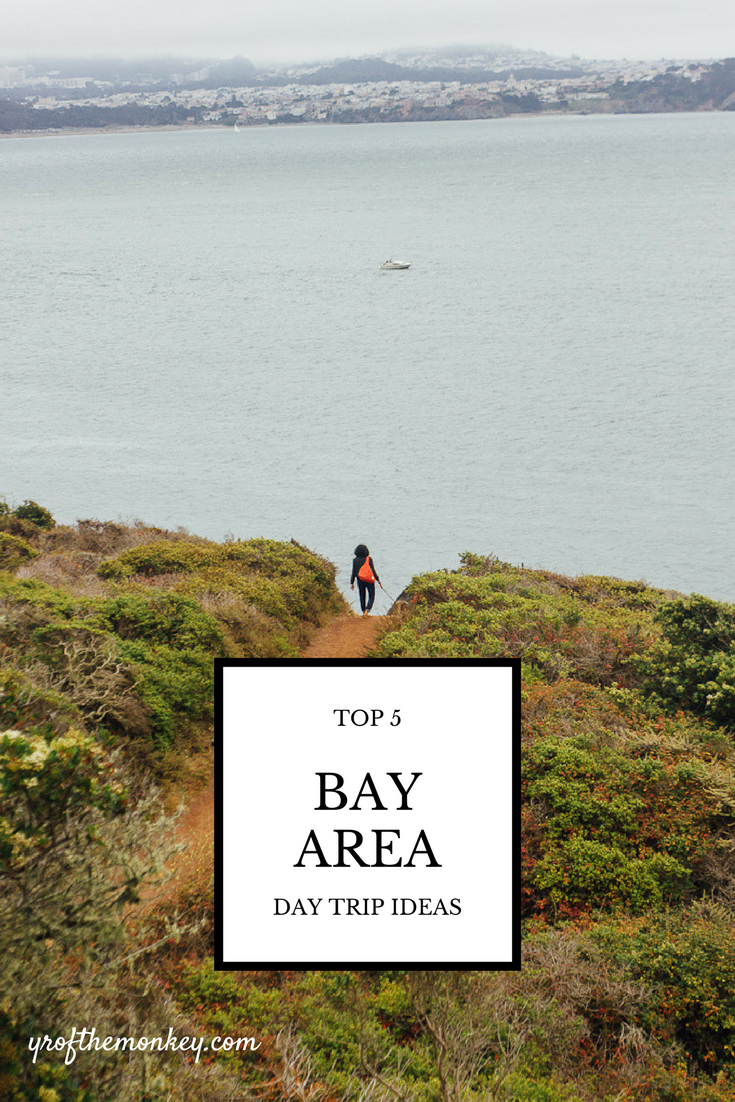 Top 5 Bay Area Day Trips Travel Destinations California