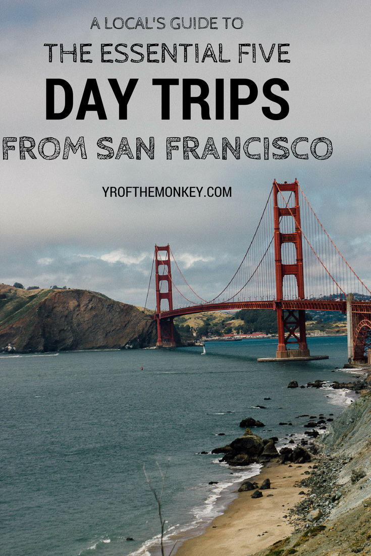 Visiting San Francisco, California, USA? Look no further than these top five Bay area day trips that you can easily make from San Francisco! All tested and tried by me, A San Francisco resident for seven years, these San Francisco day trips are your best guides to exploring the beauty of northern California and the Bay Area. Very easy and comes with complete travel guides to take the guesswork out of your travel!