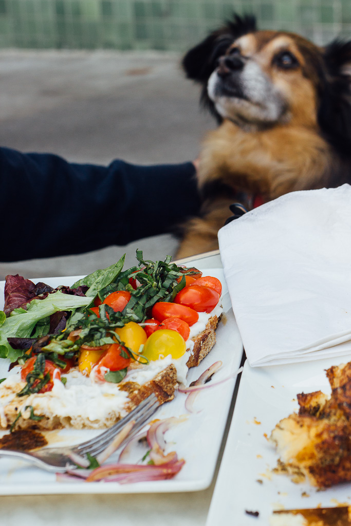 dog friendly restaurants in San Francisco, where to dine with your dog in San Francisco