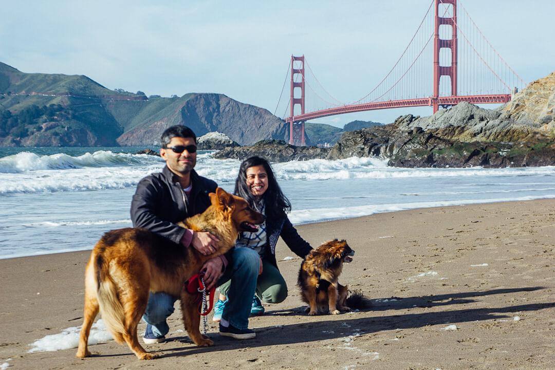 Ocean beach is a dog friendly beach in San Francisco Presidio