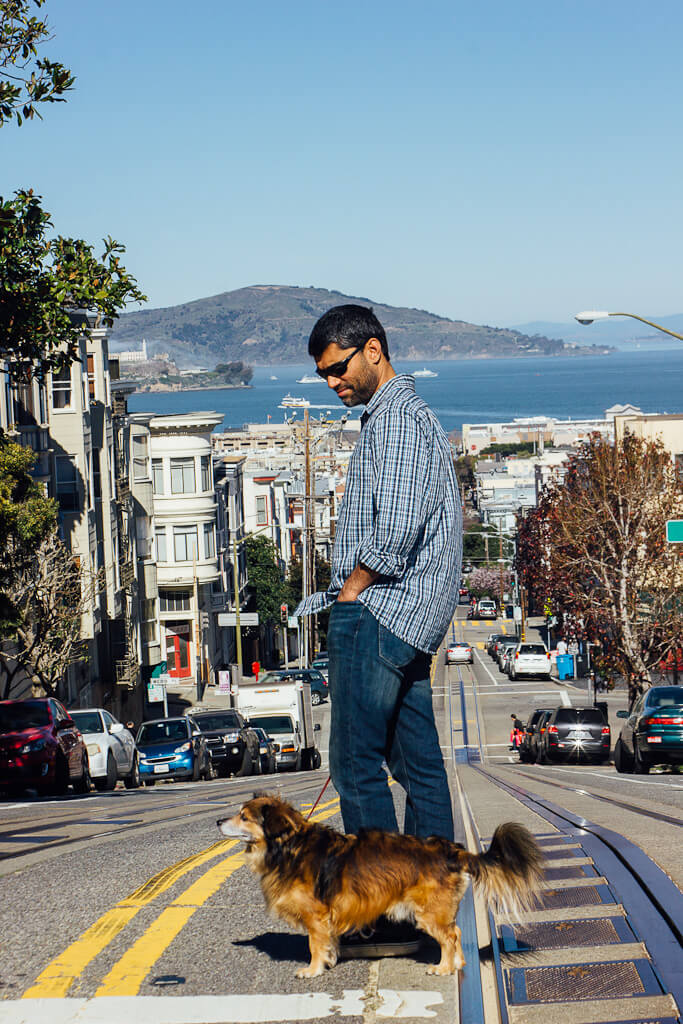 Where are dogs allowed in San Francisco? Read this dog friendly guide to find out more