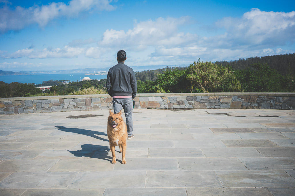 Inspiration Point in San Francisco's Presidio which is the trailhead for the ecology trail
