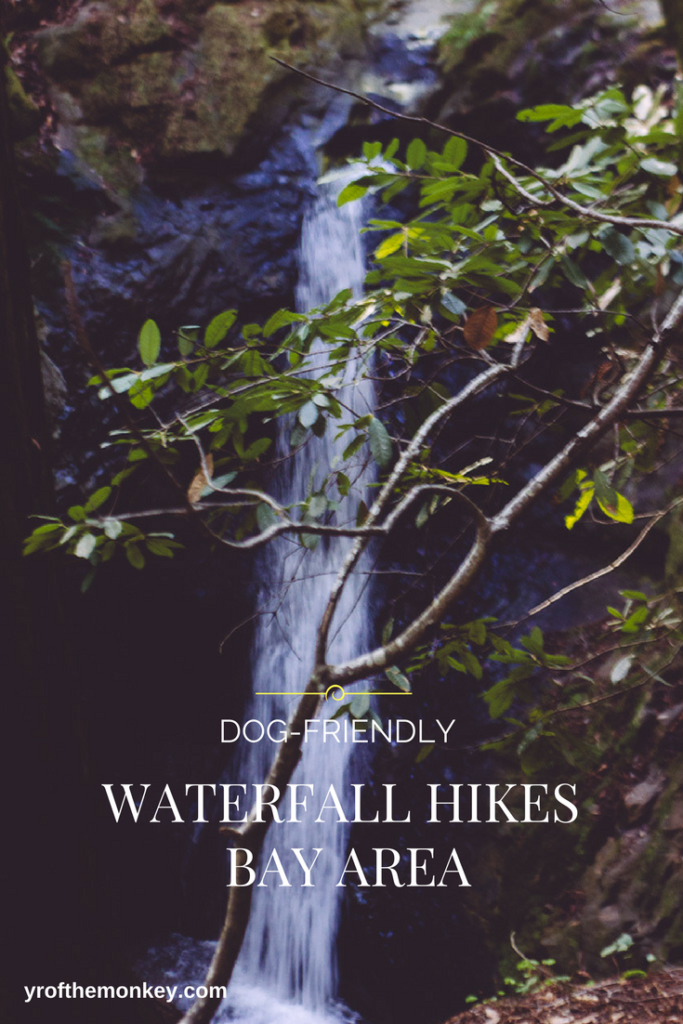 waterfall hikes bay area: Waterfall hiking trails Dog friendly California Bay Area