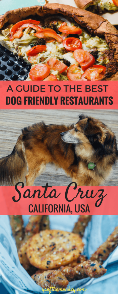 Visiting Santa Cruz, California with your dog?Then look no further than this delicious post featuring the best dog friendly restaurants in Santa Cruz. This article was shared by the Santa Cruz tourism board too! Pin it to your dog friendly travel or California board for reference! #travelwithdogs #dogfriendlyrestaurants #santacruz #californiatravel #foodietravel