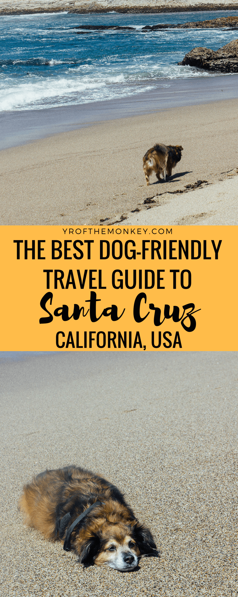 This is the best dog friendly travel guide to Santa Cruz, California USA. Filled with many dog friendly activities such as beach time and Redwoods plus dog friendly restaurant recommendations, this is the perfect pet friendly travel guide. Travel with dogs. Dog Friendly travel. Visit California. California travel. Santa Cruz beyond the boardwalk.