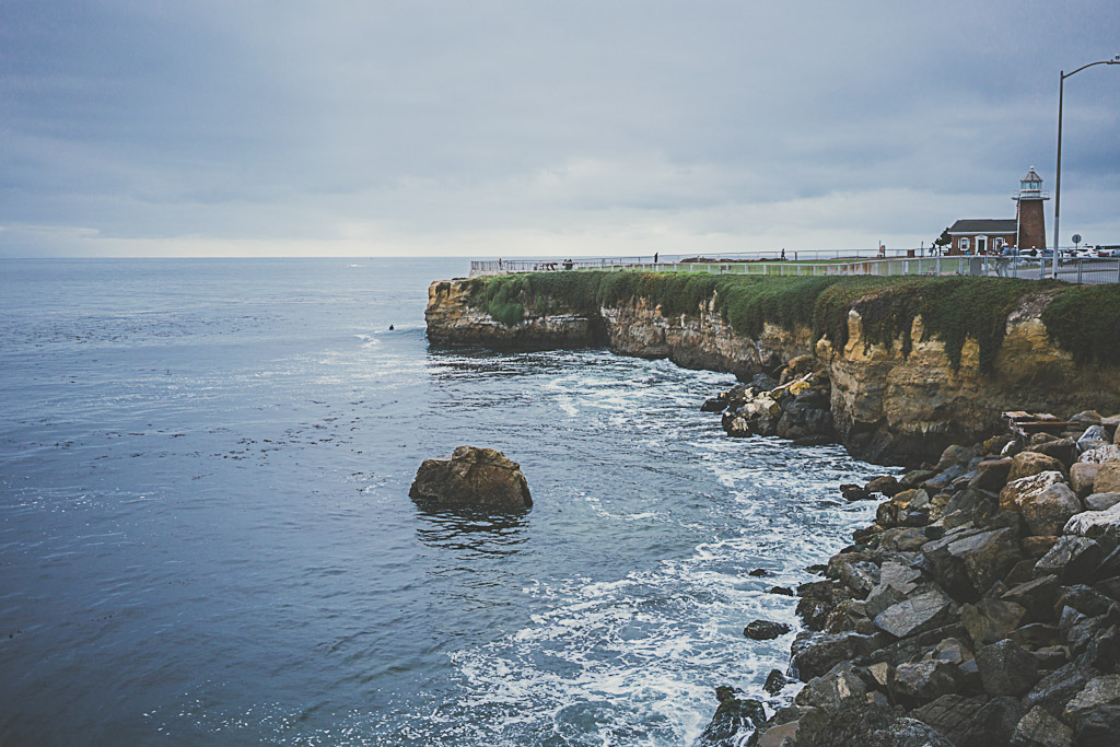 dog friendly beaches in Santa Cruz, Its Beach, Lighthouse Field State Beach