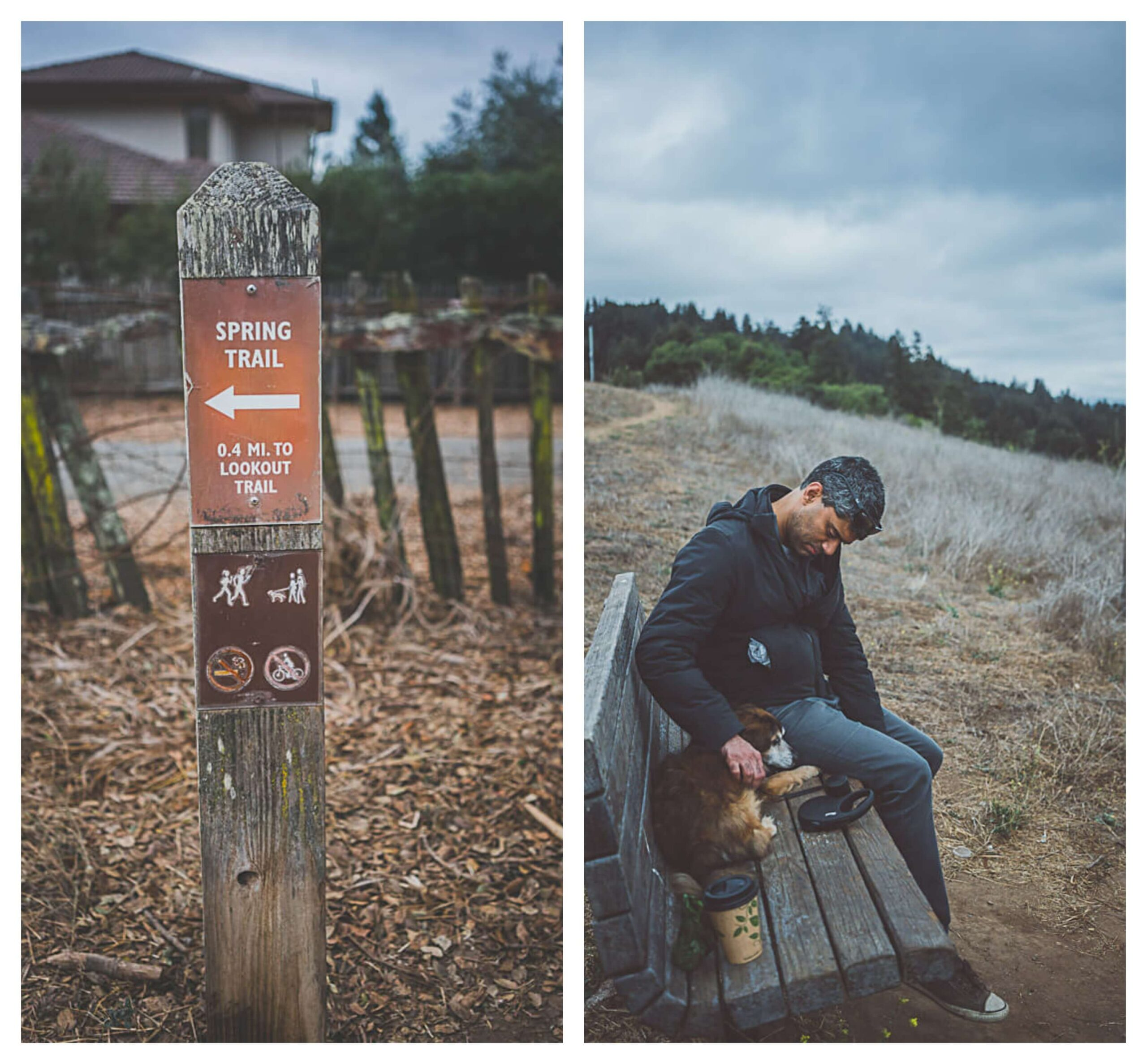 dog friendly hiking trails in Santa Cruz, where to hike with dogs in Santa Cruz