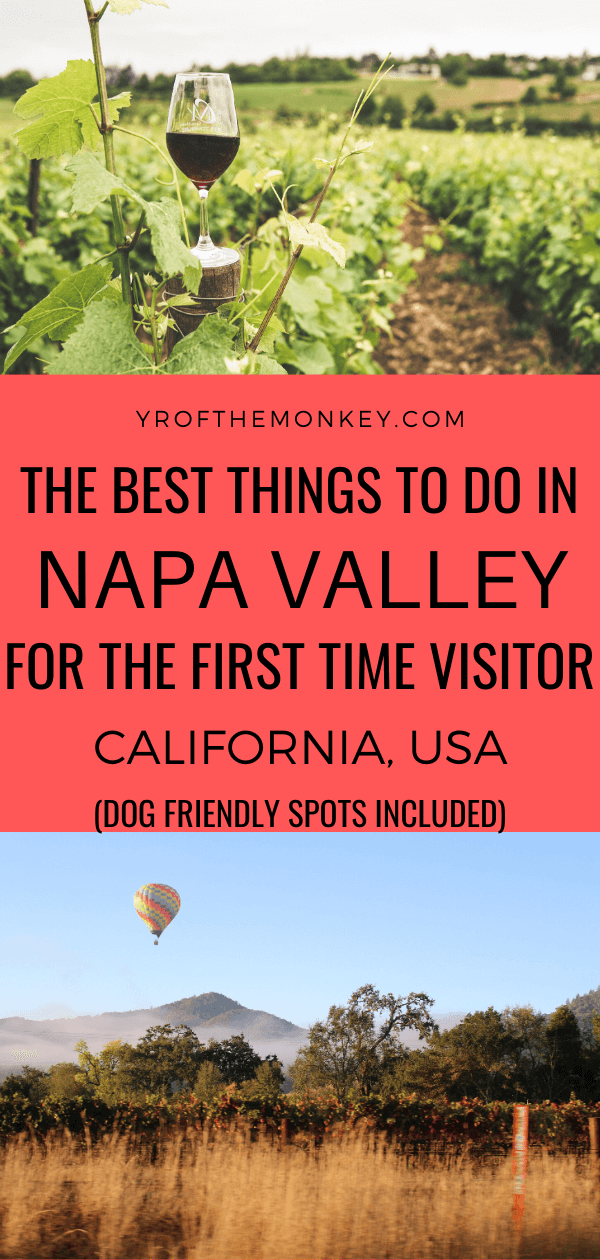 Visiting Napa Valley for the first time? Then read this post how to plan the best Napa itinerary as a first time visitor. Includes information on where to stay in Napa, the best Napa wineries for first timers, where to eat, shop and things to do other than wine tasting. Includes bonus dog friendly spots. #napa #California #USA #napavacation#weekendnapagetaway #californiawinecountry #californiawineries #napawinetasting #dogfriendlynapawineries #napavalley