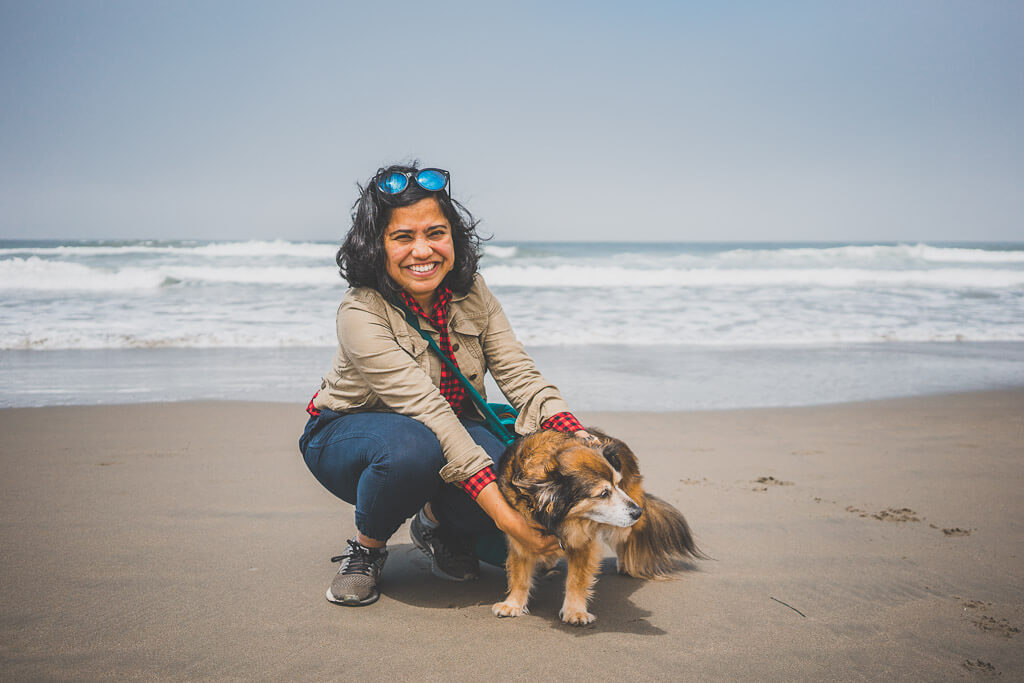 This is a guide to the best dog friendly Bay area day trips that can double up as weekend trips from San Francisco with your dog