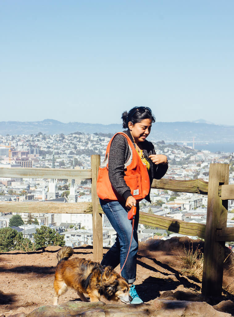 Billy Goat Hill has dog friendly hiking trails