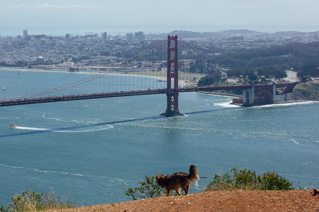 View from hawk Hill