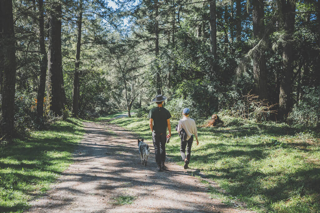 Dog friendly bay Area hikes -randall trail at Point Reyes