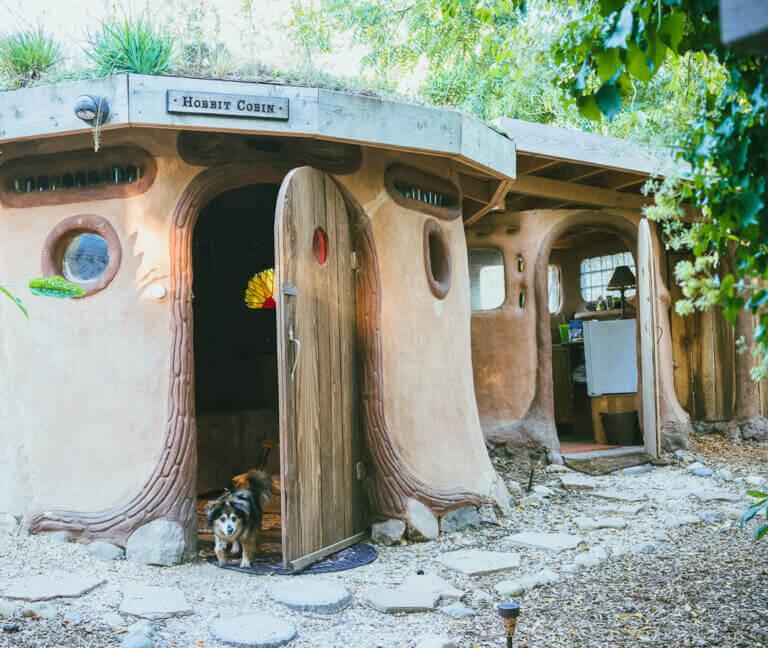 dog friendly airbnb Hobbit Cobin in petaluma Sonoma