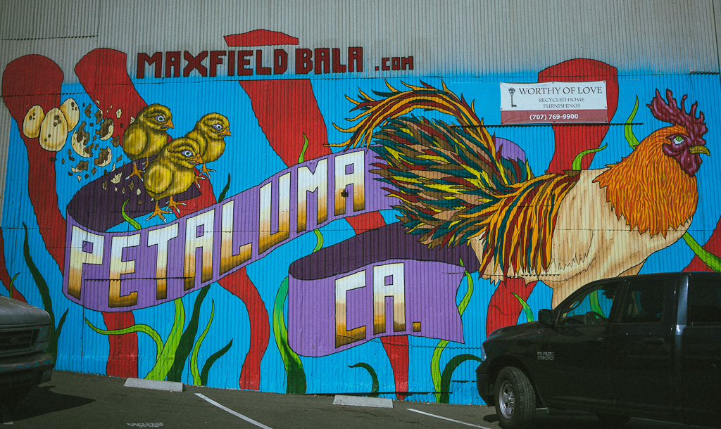 Mural in Petaluma, California