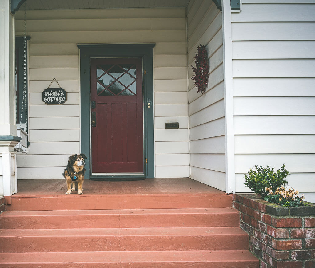 Dog friendly vacation rental in Lodi