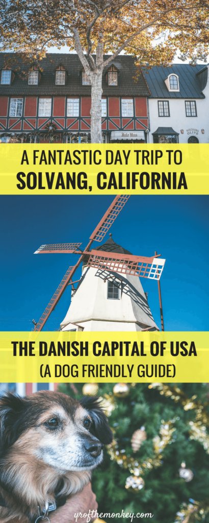 Dog Friendly Solvang is a guide to a day trip to Solvang, California with your dog and lists all dog friendly attractions, restaurants, wineries and pet friendly hotels. Read this post to discover the only Danish city in USA and pin it to your California travel or pet travel board now! #solvang #californiatravel #travelwithdogs #petfriendly #dogfriendly #USA