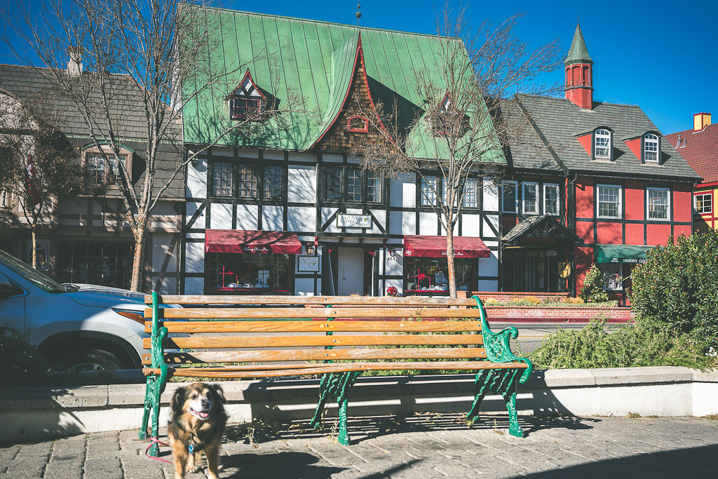 dog friendly solvang, Solvang is a dog friendly place and makes for an excellent day trip from LA