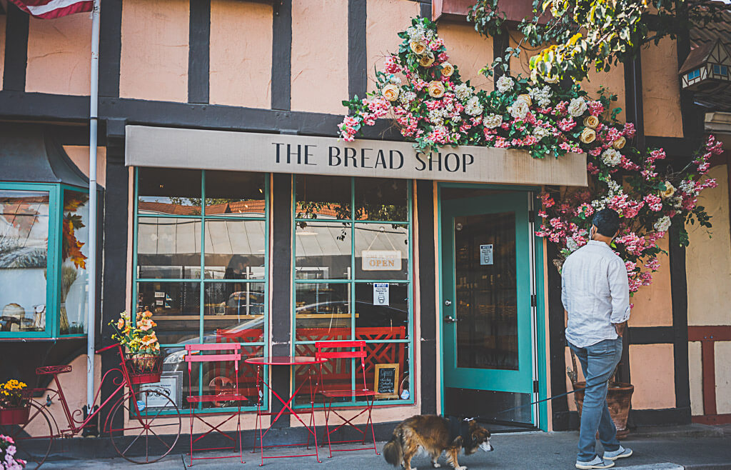 dog friendly Solvang, dog friendly activities to do in Solvang