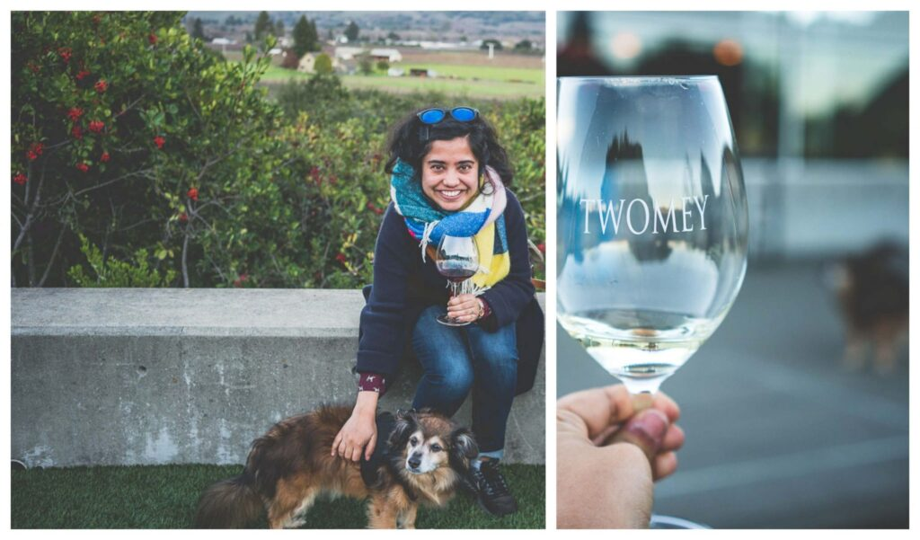 dog friendly wineries in Sonoma, dog friendly wine tasting in Sonoma, sonoma dog friendly wineries, California wineries that welcome dogs, dry creek wineries, Russian river wineries, dry creek valley, Healdsburg wineries, Kenwood wineries, Russian river valley, Twomey winery