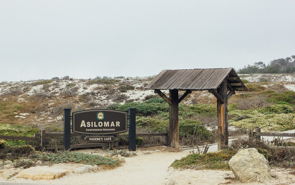 Asilomar beach in Pacific grove is dog friendly