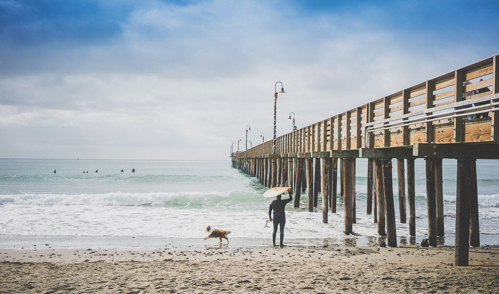 Beaches that are pet friendly in California: Cayucos state beach on the Central Coast near SLO is one such beach