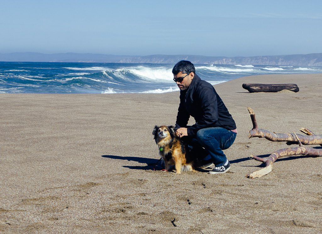 Kehoe beach is one of the few dog friendly beaches at Point Reyes National Seashore, California