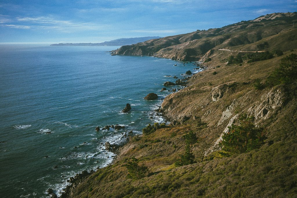 dog friendly Beaches north of Golden gate bridge in marin county