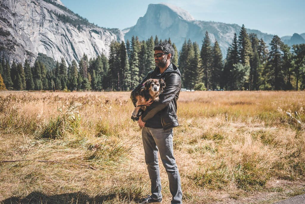 Dogs are allowed in Yosemite, such as on cooks meadow loop