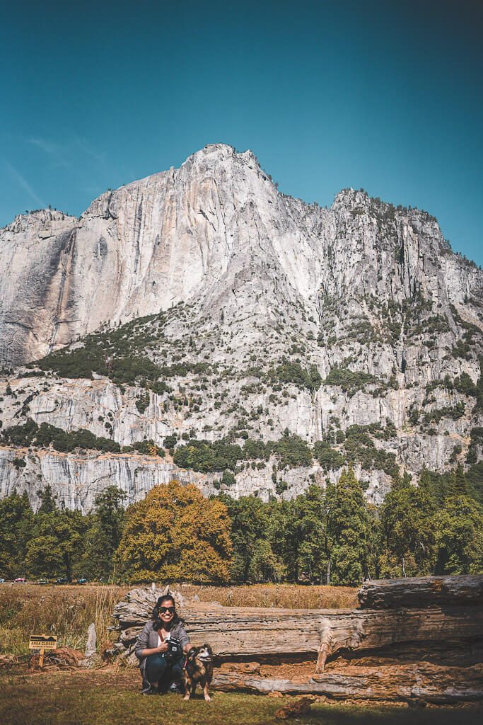 visiting Yosemite with dogs, where to take your dog in Yosemite, dog friendly hotels in Yosemite, pet friendly lodging in Yosemite