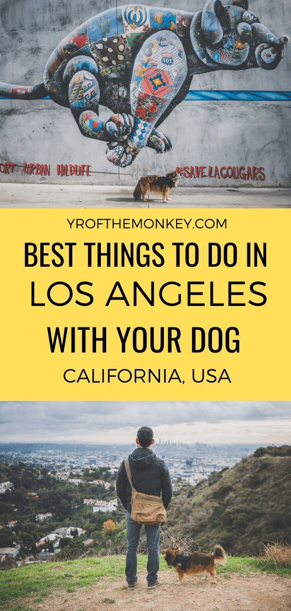 Looking to take your pup to Los Angeles? Then read this dog friendly guide to LA featuring the best hikes, dog parks, restaurants and top dog friendly day trips to guarantee maximum fun for your dog friendly vacation in Southern California #dogfriendly #petfriendly #dogfriendlyhotels #travelwithdogs #USA #California #LosAngeles #dogfriendlyguide #dogfriendlytravel #southerncalifornia