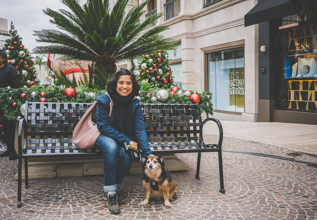 Dog friendly Los Angeles: explore Rodeo drive with your dog