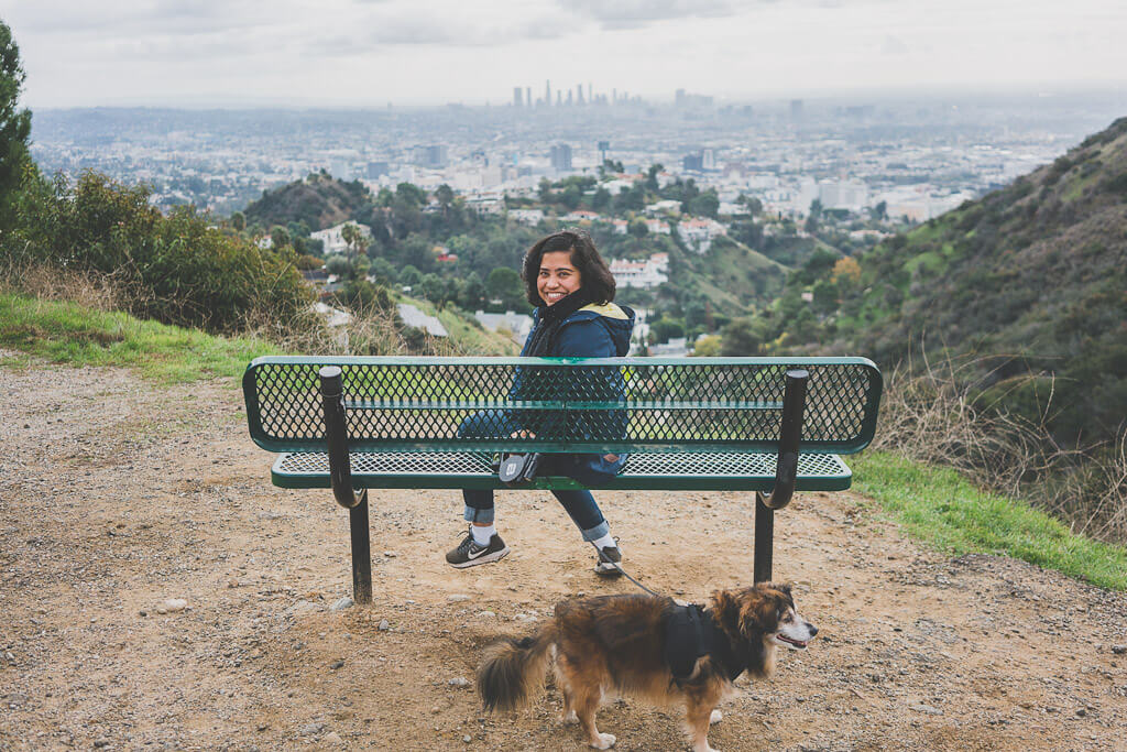 Runyon Canyon Park is one of the best dog parks in LA