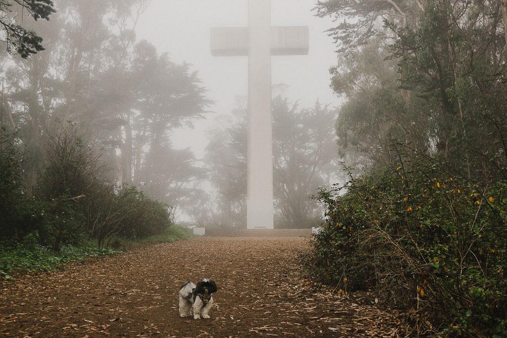 Mount Davidson Armenian American Cross