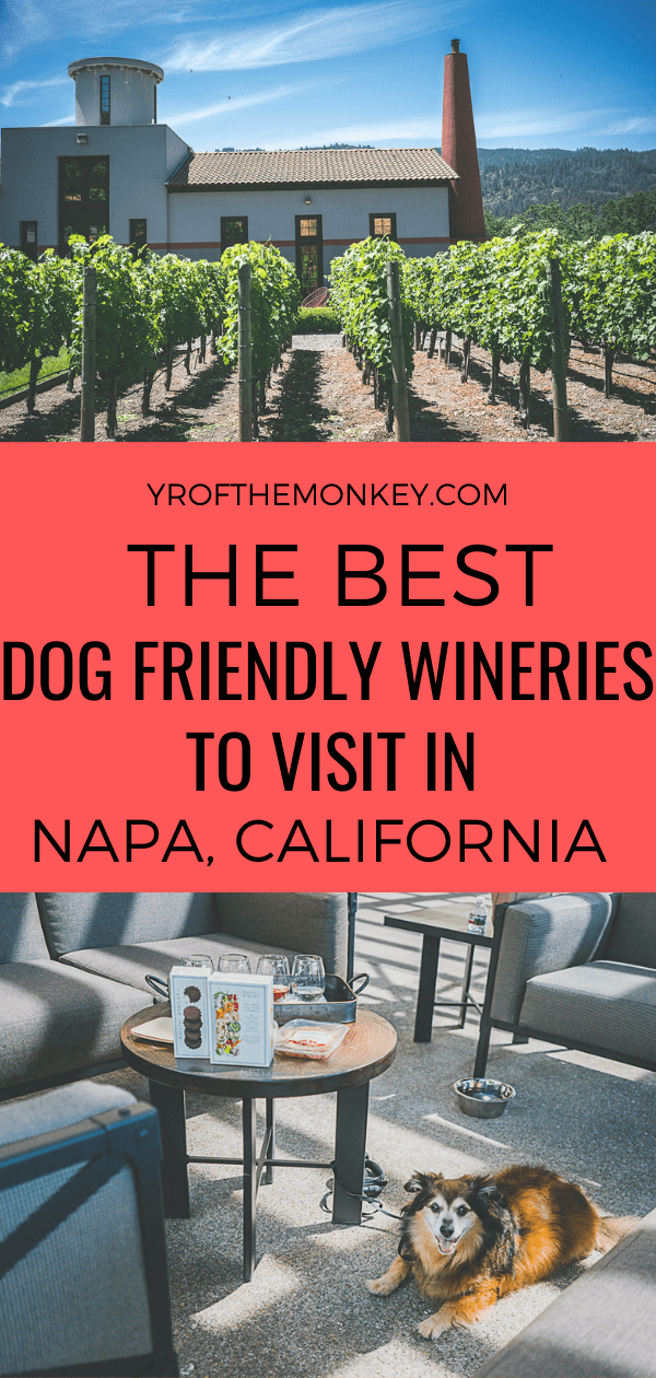 Looking for the best dog friendly wineries in Napa valley, California, USA to visit? Then read this wine loving dog mom's guide on the best places to go wine tasting in Napa with your dog. Pin this to your California or dog friendly travel board now! #travelwithdogs #Napa #Napavalley #California #dogfriendlywineries #Californiawinecountry #dogfriendlyvacation