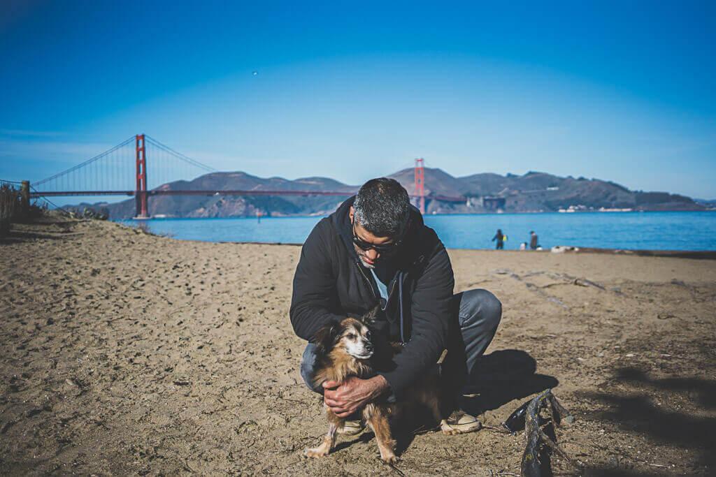 Crissy field east Beach is an off-leash dog friendly beach in San Francisco