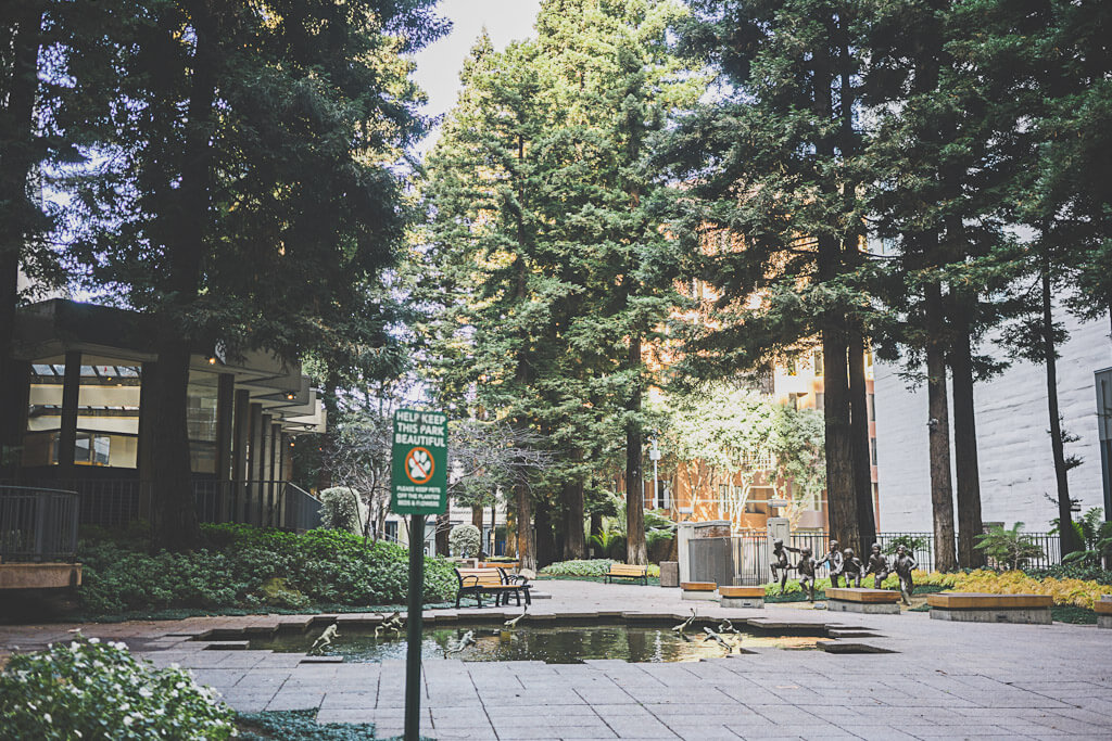 hidden redwood park in San Francisco