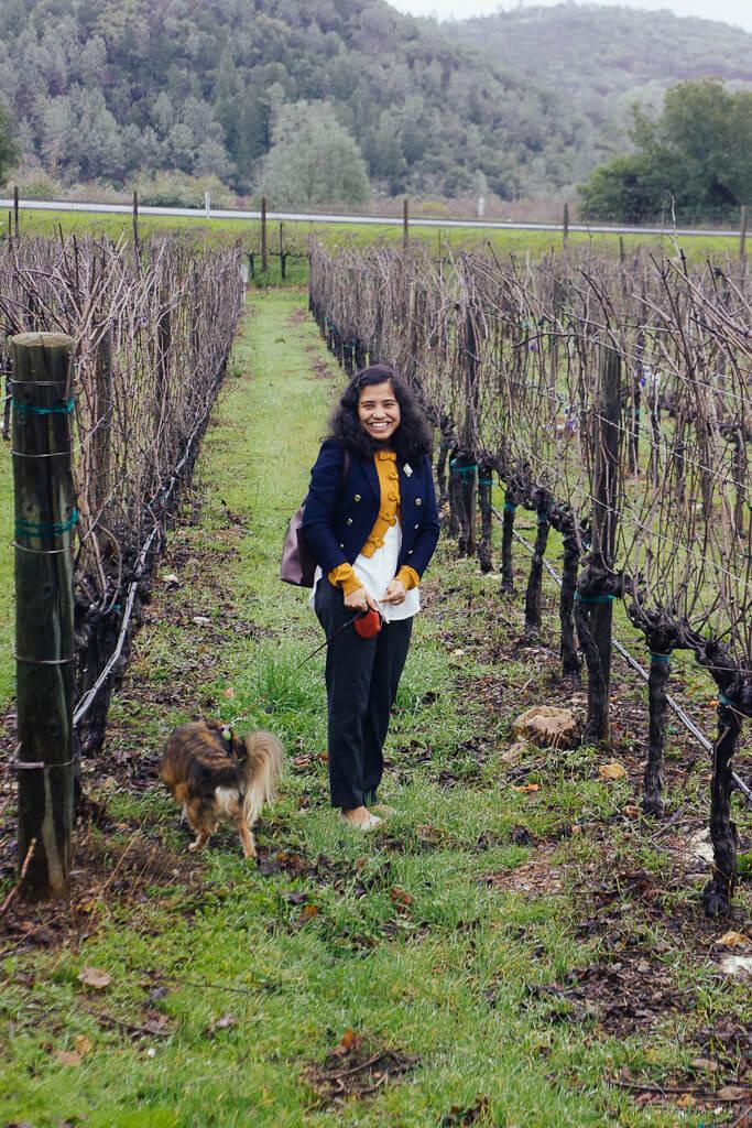 dog friendly winery Markham vineyards in St. Helena