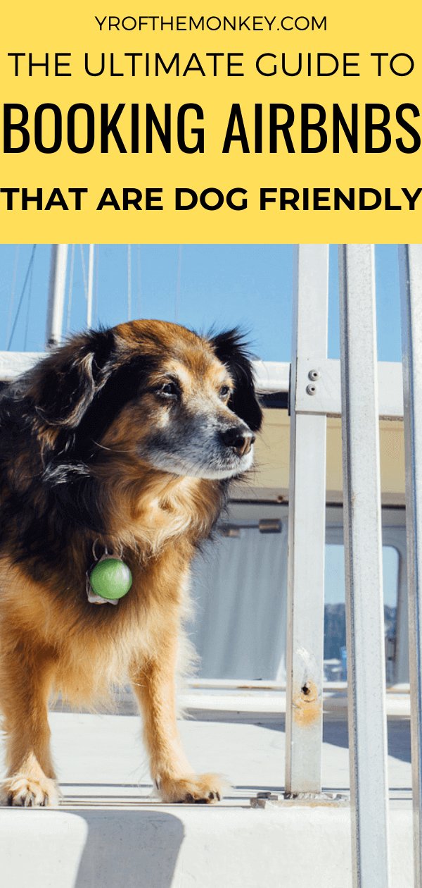 Are you thinking of booking a dog friendly Airbnb for your next vacation with your pup and wondering where to start? Then read this travel savvy dog mom's guide to everything you need to know about dog friendly Airbnbs for the perfect dog-cation! Pin this to your dog or pet friendly travel board now! #travelwithdogs #dogfriendlyvacationrental #dogfriendlyairbnb #dogfriendlyvacation #dogfriendlylodging