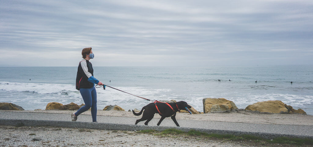 dog friendly hiking in Half Moon Bay along the coastal trail