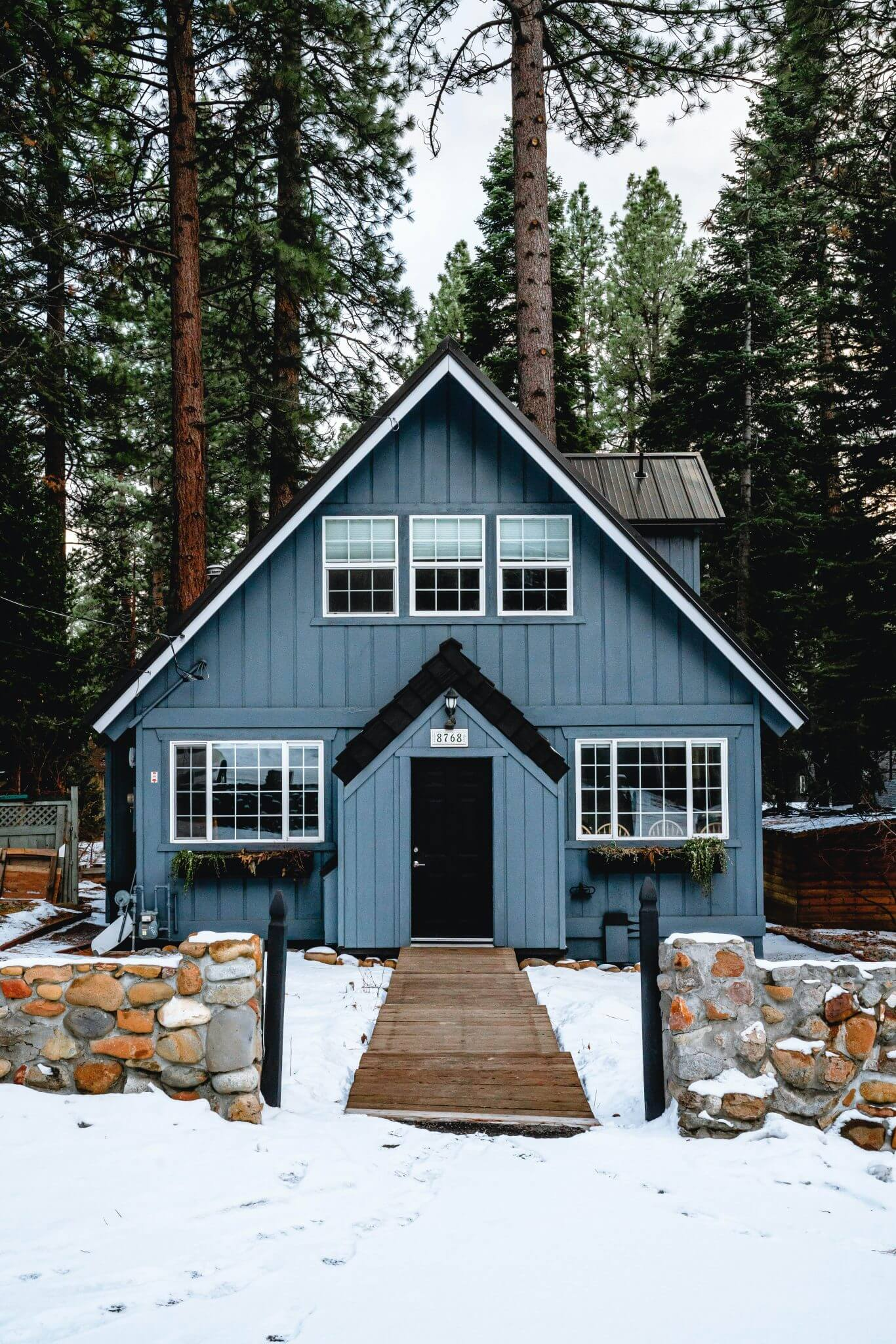 dog friendly cabins in Lake Tahoe