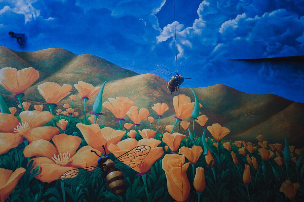 Kinetik Ideas poppies mural, Sacramento Wide open walls
