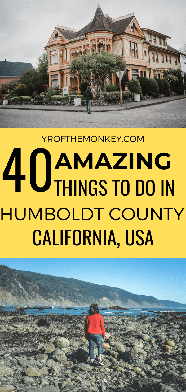 This is a guide to 40 amazing things to do in Humboldt County, home of the majestic coastal Redwoods in California! From Redwoods to Black Sand Beaches, colorful Victorian houses to charming lighthouses, this Northern California guide covers it all!#USA #America #California #Californiaroadtrip #Humboldtcounty #visithumboldt #lostcoast
