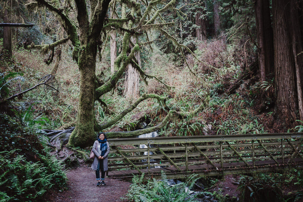 Things to do in Humboldt County: Visit Trillium Falls