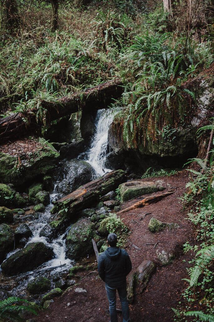 Trillium Falls in orick